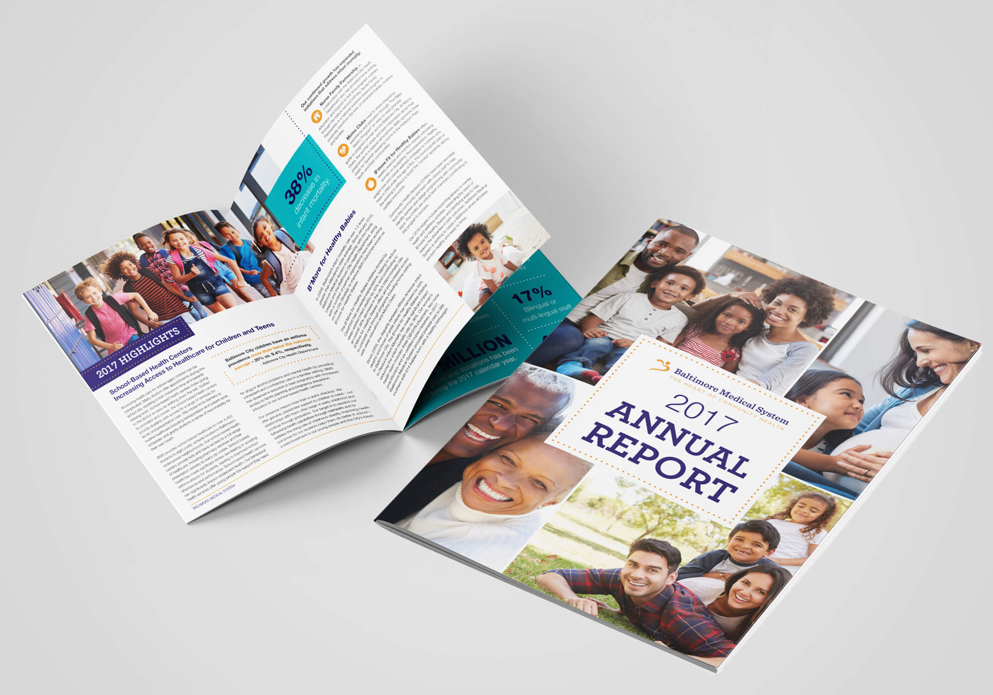 BMS annual report