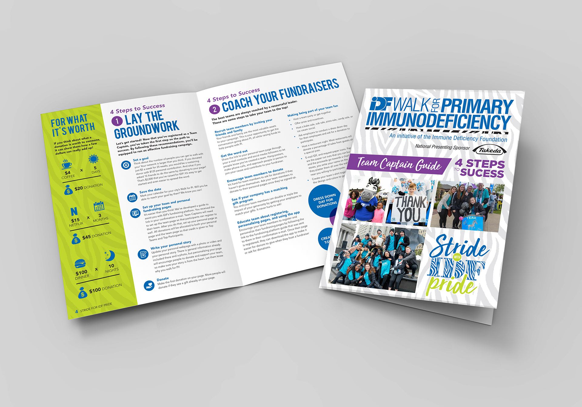 Immune Deficiency Foundation custom collateral, fundraising brochure